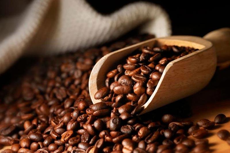 Studi, il caffè fa bene alla memoria ma è a rischio estinzione