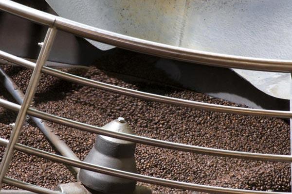 Sequenziato il genoma del caffe', scoperto cosa lo rende unico